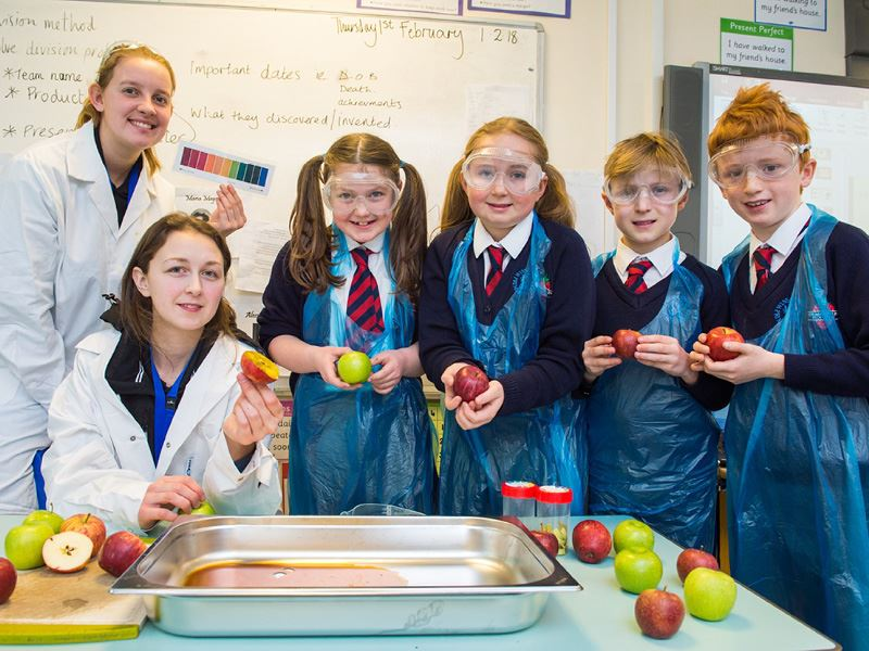 Inspiring young people about the food and drink industry